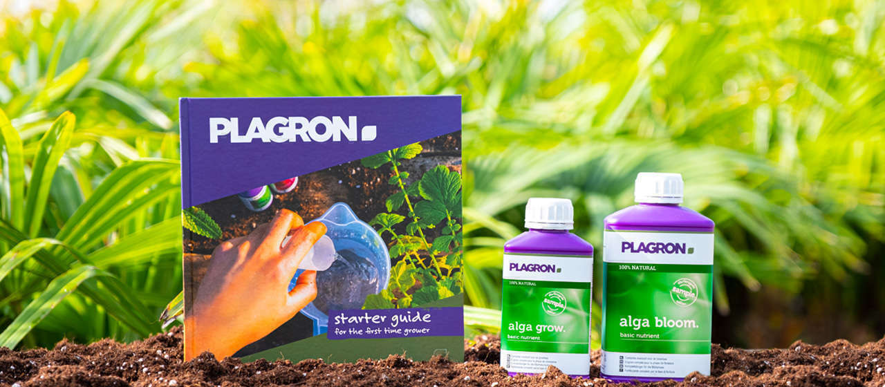 A starter guide 100% NATURAL with two bottles of basic nutrients: Alga Grow 250ml and Alga Bloom 500ml